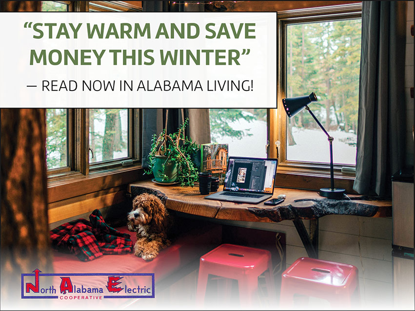 """""""Stay warm and save money this winter"""" -Read now in Alabama Living! North Alabama Electric Cooperative"""