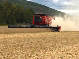 Farming equipment on a field.